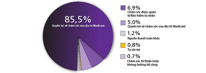Biểu đồ hình quạt thể hiện đối tượng chi trả dịch vụ chăm sóc cuối đời